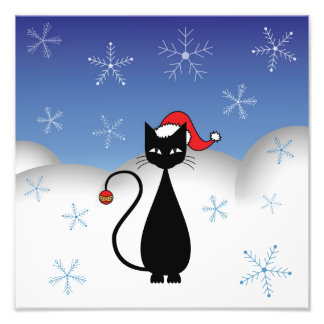Christmas Cat with Snowflakes Photo Art