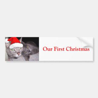 Christmas Cats Bumper Sticker