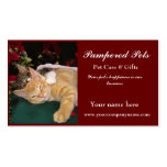 Christmas Cats, Cute Kittens Hugging, Kitty Smile Business Card