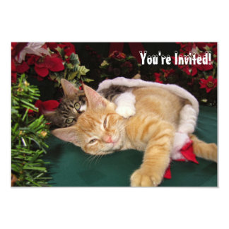 Christmas Cats, Cute Kittens Hugging, Kitty Smile Card