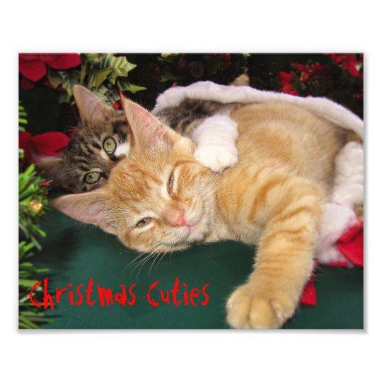 Christmas Cats, Cute Kittens Hugging, Kitty Smile Photo Print