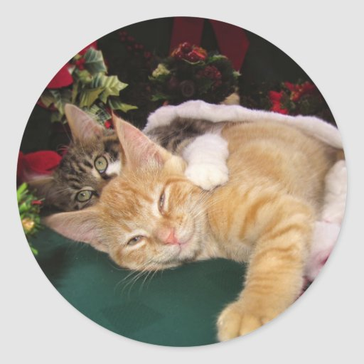 Christmas Cats, Cute Kittens Hugging, Kitty Smile Sticker