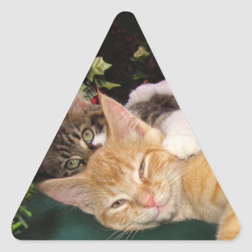 Christmas Cats, Cute Kittens Hugging, Kitty Smile Triangle Stickers