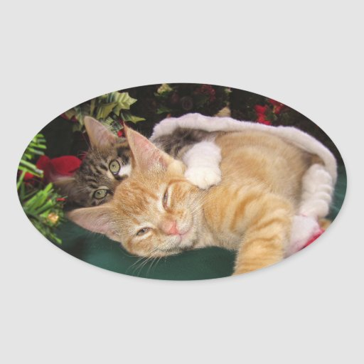 Christmas Cats, Cute Kittens Hugging, Kitty Smile Oval Stickers