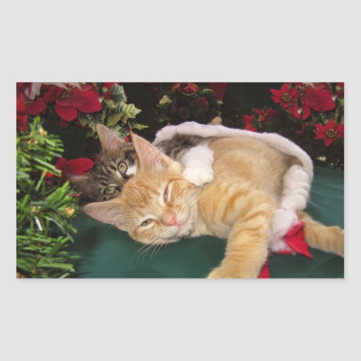 Christmas Cats, Cute Kittens Hugging, Kitty Smile Rectangle Stickers