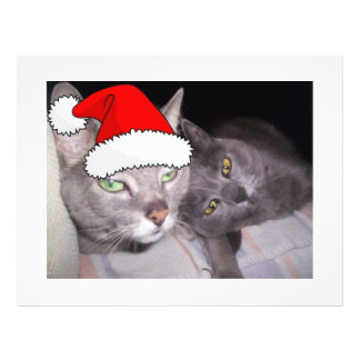Christmas Cats Flyer