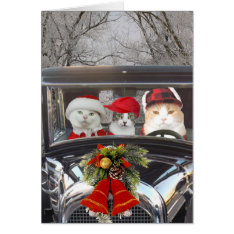 Christmas Cats In Car Card at Zazzle
