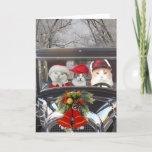 """Christmas Cats in Car Holiday Card<br><div class=""""desc"""">Missy,  Mikie & Bubba in Christmas attire.  The old car and the snowy tree lined road were separate images from PublicDomainPictures.net.  You can delete the ornament on the hood if people don"""