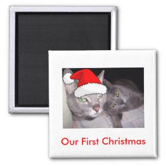 Christmas Cats Refrigerator Magnets