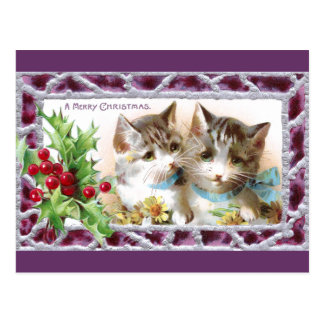 Christmas Cats with Holly and Daisies Postcard