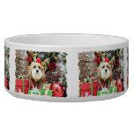 Christmas - Cavachon - Max Dog Water Bowls