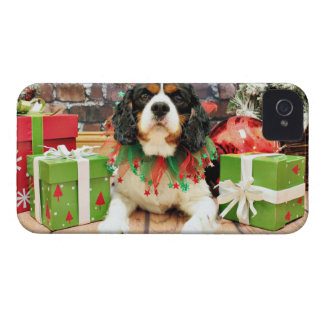 Christmas - Cavalier King Charles Spaniel - Bandit iPhone 4 Cover