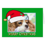 Christmas Cavalier King Charles Spaniel Card