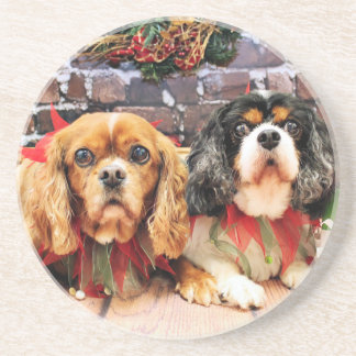 Christmas - Cavalier - Lily and Rose Coasters