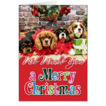 Christmas - Cavalier - Sweet Pea, Lily, Rose Poppy Greeting Card