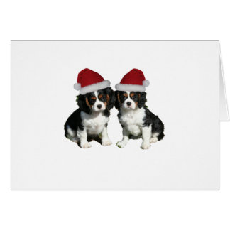 Christmas Cavaliers Greeting Card