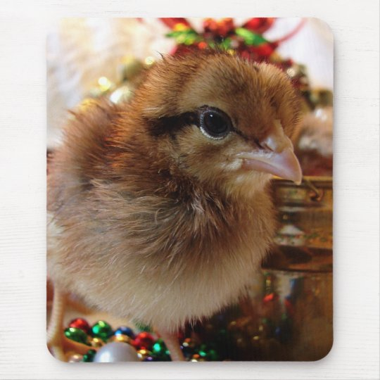 Christmas Chick 3 Mouse Pad