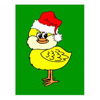 Christmas chick postcard