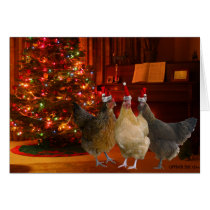 Christmas Chickens Card