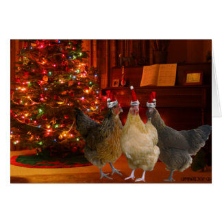 Christmas Chickens Greeting Cards