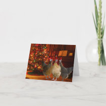 Christmas Chickens Holiday Card