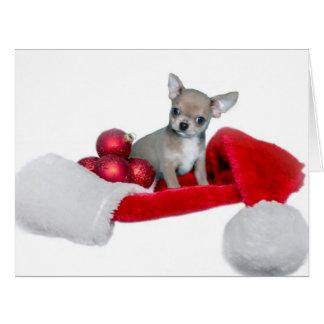 Christmas Chihuahua dog Cards