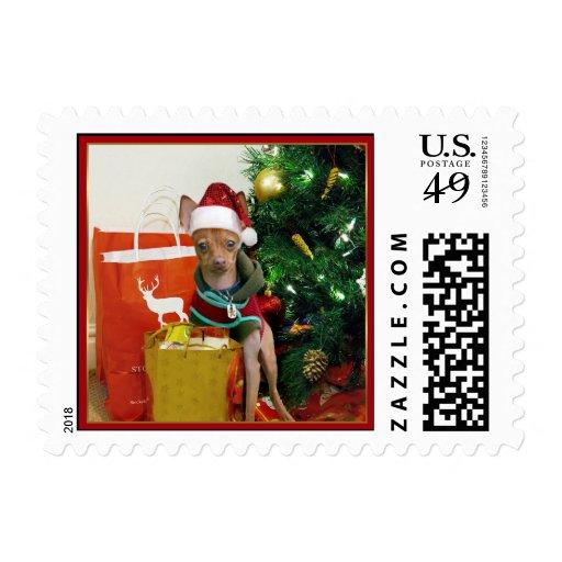 Christmas Chihuahua dog Postage Stamp