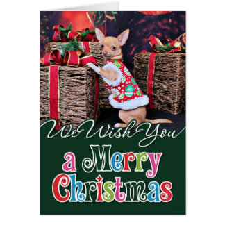 Christmas - Chihuahua - Matty Card