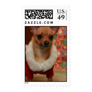 Christmas Chihuahua Postage Stamps