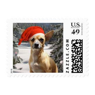 Christmas Chihuahua Postage