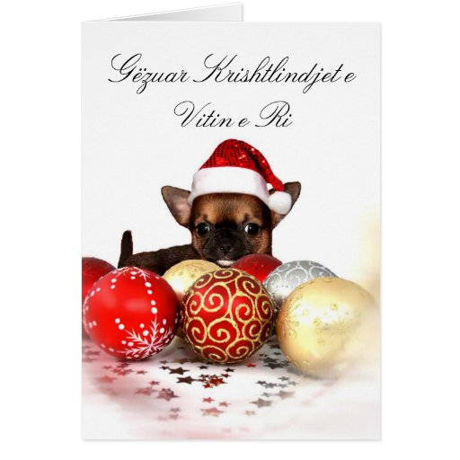Christmas chihuahua puppy greeting card