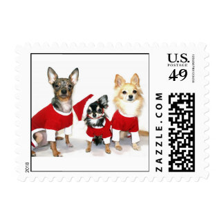 Christmas Chihuahua Stamps