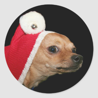 Christmas Chihuahua stickers