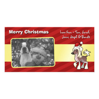 Christmas Chinese Crested (hairless) Card