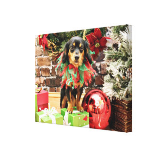 Christmas - Chiweenie - Titus Stretched Canvas Print