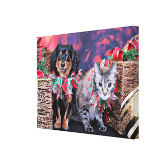 Christmas - Chiweenie - Titus - Kitty Gallery Wrapped Canvas