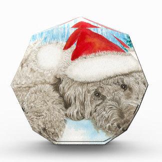 Christmas Chocolate Labradoodle Awards