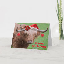 Christmas Chums Card