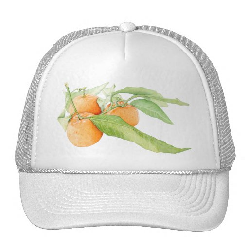 Christmas Clementines Hat