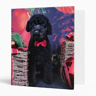 Christmas - Cockapoo - Max Binder
