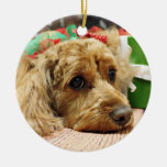 Christmas - Cockapoo - Odie Double-Sided Ceramic Round Christmas Ornament