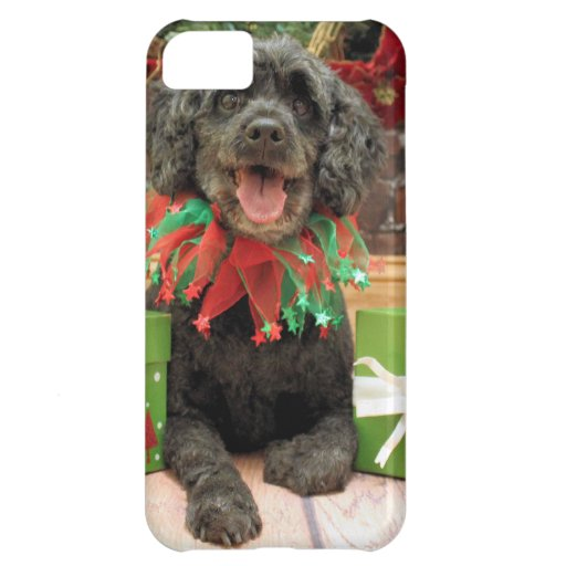 Christmas - Cockapoo - Trumbo Case For iPhone 5C