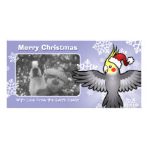 Christmas Cockatiel Card