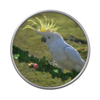 Christmas Cockatoo Bird in Australia Jelly Belly Tins