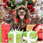 Christmas - Cocker Spaniel - Murphy Photo Sculpture