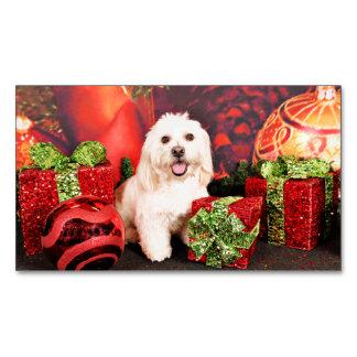 Christmas - Cocker - Toby, Havanese - Little T Business Card Magnet
