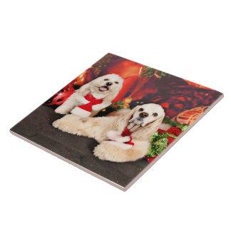 Christmas - Cocker - Toby, Havanese - Little T Ceramic Tile