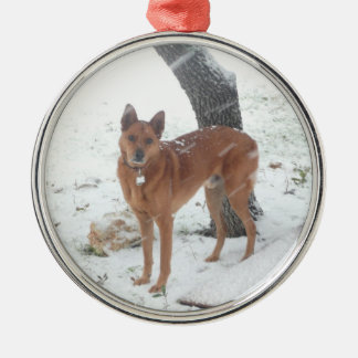 Christmas Collection Add Pet or Family Photo Metal Ornament
