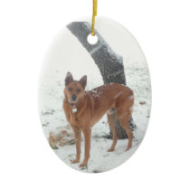 Christmas Collection Pet or Family Photo Ceramic Ornament