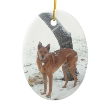 Christmas Themed Christmas Collection Pet or Family Photo Ceramic Ornament